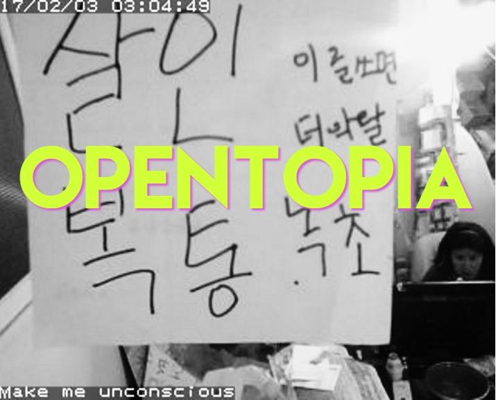 opentopia1-2